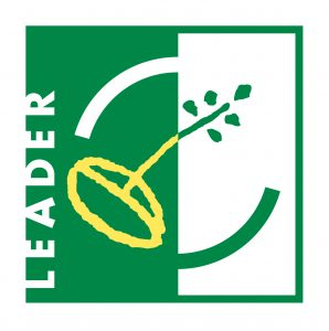 logo-leader-couleur